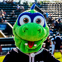 29 May 2021: Vermont Lake Monsters Mascot Champ entertains fans prior to a game against the Norwich Sea Unicorns at Centennial Field in Burlington, Vermont. The Lake Monsters defeated the Sea Unicorns 6-3 in their FCBL Home Opener, the first home game played at Centennial Field post-Covid-19 pandemic. Mandatory Credit: Ed Wolfstein Photo *** RAW (NEF) Image File Available ***