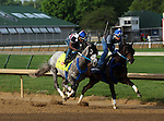 LOUISVILLE, KY - APRIL 25: Creator (grey horse on left, Tapit x Morena, by Privately Held) works 5 furlongs in 1:02.4  in company at Churchill Downs, Louisville KY in preparation for the Kentucky Derby. Owner WinStar Farm LLC, trainer Steven M. Asmussen. (Photo by Mary M. Meek/Eclipse Sportswire/Getty Images)