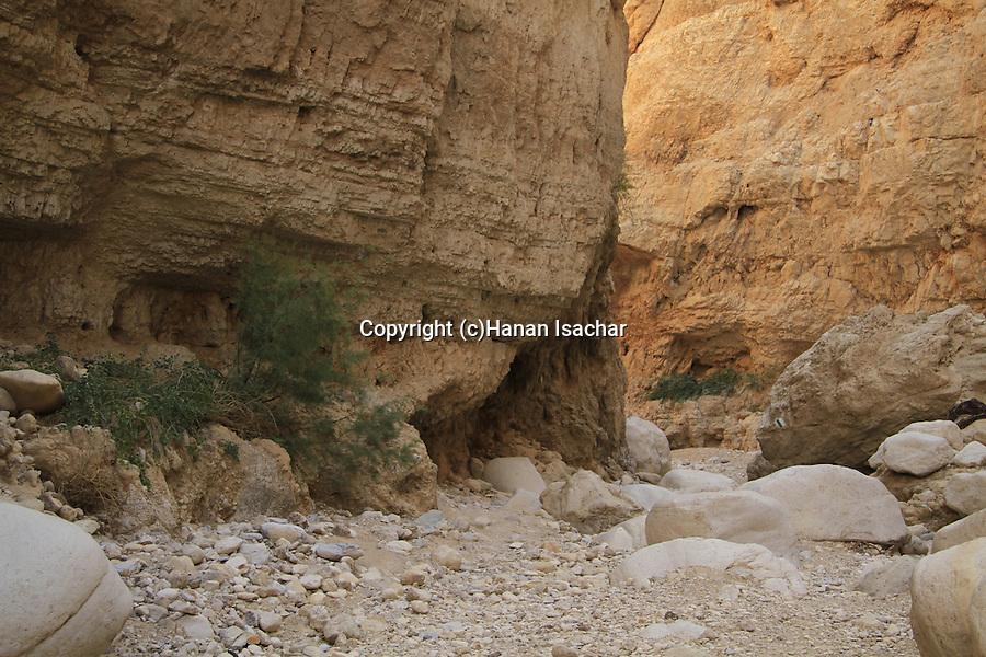 Judean desert, the canyon in Wadi Og