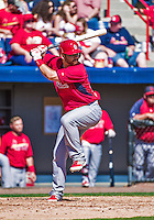 9 March 2014: St. Louis Cardinals catcher Ed Easley in action during a Spring Training game against the Washington Nationals at Space Coast Stadium in Viera, Florida. The Nationals defeated the Cardinals 11-1 in Grapefruit League play. Mandatory Credit: Ed Wolfstein Photo *** RAW (NEF) Image File Available ***