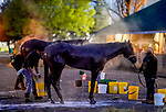 April 26, 2021: Scenes from around the track as horses prepare for the Kentucky Derby and Kentucky Oaks at Churchill Downs on April 26, 2021 in Louisville, Kentucky. Scott Serio/Eclipse Sportswire/CSM
