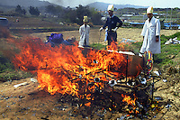 Korea. South Korea. Gimje area. Wonpyong. Funeral ceremony for an old man who died a few days ago. Traditional korean burial and burial service. Men burn the coffin which will be reduced to a blazing mass. The old man has been buried in a  shroud.  © 2002 Didier Ruef ..