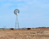 Windmill in pasture near Dumont, TX