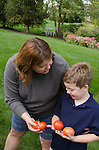 Kris and Nate with, tomato, outdoors at Barb and Richard's home, Columbus, Ohio, USA