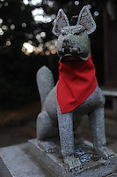 """""""Komainu"""" , guardian dogs at a shinto shrine in a residential area in Tokyo, Japan."""