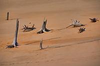 Silver Lake, Michigan sand dunes