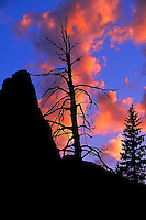 The silhouette of Pumpelly Pillar rises above pine trees in the Two Medicine district of Glacier National Park, Montana, just after sunset during summer.<br /> <br /> © Michael Forster Rothbart<br /> www.mfrphoto.com <br /> 607-267-4893 o 607-432-5984<br /> 5 Draper St, Oneonta, NY 13820<br /> 86 Three Mile Pond Rd, Vassalboro, ME 04989<br /> info@mfrphoto.com<br /> Photo by: Michael Forster Rothbart<br /> Date: 08/2002     File#:   color slide.<br /> ----------<br /> Original caption:<br /> The silhouette of Pumpelly Pillar rises above pine trees in the Two Medicine district of Glacier National Park, just after sunset during summer. During a week-long UW-Madison Service And Learning Adventure (SALA) summer volunteer trip to the Blackfeet Indian Reservation in northwest Montana, students and alumni volunteered around the reservation.
