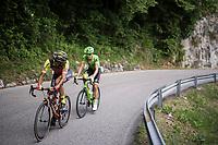 Filippo 'Pipo' Pozzato (ITA/Wilier Triestina-Selle Italia) checking what's/who's behind up the Foza climb (1086m) finding Joe Dombrowski  (USA/Cannondale-Drapac) in his wake<br /> <br /> Stage 20: Pordenone › Asiago (190km)<br /> 100th Giro d'Italia 2017
