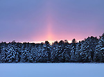 Glowing red sunset behind snow covered trees. Atmospheric landscape wintertime nature scenery at Algonquin Provincial Park, Ontario, Canada