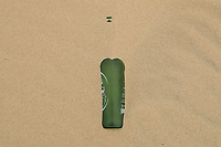 glass bottle, Heineken Pilsener beer. green bottle pollution and garbage in the sand dunes of the Samalayuca desert, Chihuahua Mexico. 52 km south of Ciudad Juárez in the middle of the desert area known as the Médanos de Samalayuca. This tourist and travel destination belongs to the Municipality of Ciudad Juárez in northern Mexico.<br /> (Photo: Luis Gutierrez / NortePhoto)<br /> <br /> botella de cristal, cerveza Heineken Pilsener. botella  color verde. contaminacion y basura en las dunas de arena del desierto de Samalayuca, Chihuahua Mexico. A 52 km al sur de Ciudad Juárez en medio de la zona desértica conocida como los Médanos de Samalayuca. Este destino turístico y de viajes pertenece al Municipio de Ciudad Juárez en el norte de Mexico. <br /> (Foto: LuisGutierrez/NortePhoto)
