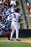 New York Yankees center fielder Aaron Hicks (31) at bat during a Grapefruit League Spring Training game against the Toronto Blue Jays on February 25, 2019 at George M. Steinbrenner Field in Tampa, Florida.  Yankees defeated the Blue Jays 3-0.  (Mike Janes/Four Seam Images)