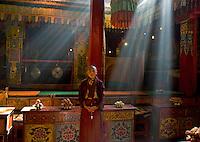 Monk at Gasang Monastery., Trindu, 2006