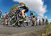 UCI Oceania Tour - NZ Cycling Classic stage one - Masterton to Gladstone circuit in Wairarapa, New Zealand on Wednesday, 20 January 2016. Photo: Dave Lintott / lintottphoto.co.nz