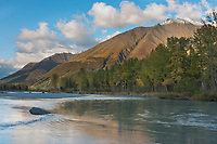 South fork, Kenai mountains, Chugach National Forest, Kenai Peninsula, southcentral, Alaska.