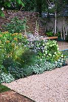 Digitalis, hydrangea, lamium, fennel patio plantings with stone wall, bench, birch trees, patio, lovely serene mixture in backyard garden