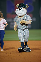 Jackson Generals mascot Sarge during a game against the Chattanooga Lookouts on April 27, 2017 at The Ballpark at Jackson in Jackson, Tennessee.  Chattanooga defeated Jackson 5-4.  (Mike Janes/Four Seam Images)