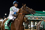 September 18, 2021: #5 Majestic d'Oro in the G3 Pocahontas S. at Churchill Downs in Louisville, Kentucky on September 18, 2021. Jessica Morgan/Eclipse Sportswire.