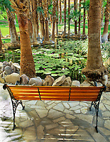 Lily pond and bench in gardens of Furnace Creek Inn. Death Valley National Park, California
