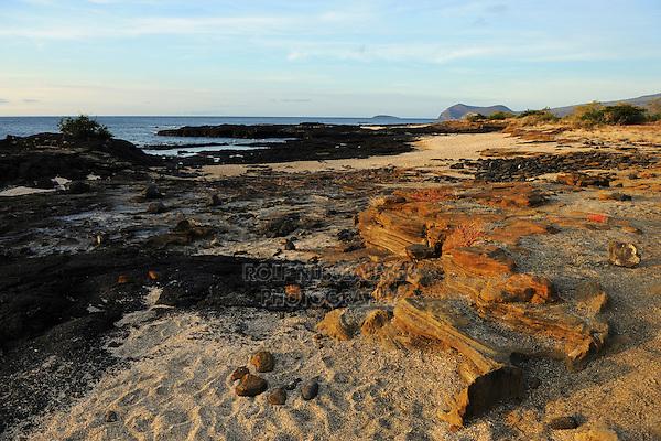 Puerto Egas Bay, Santiago Island, Galapagos Islands, Ecuador, South America
