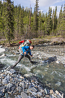 Trekking a drainage in the Brooks Range mountains in Alaska's Arctic