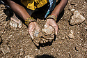 India - Jharkhand - Dhab - A miner holds raw mica in their hands. Before being sent to Kolkata mica will be sent to Jhumri Tilaiya's factories, 30 km away from the village in order to separate the powder from the mica and select the qualities.