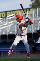 Johnson City Cardinals center fielder Jonatan Machado (51) at bat during the first game of a doubleheader against the Princeton Rays on August 17, 2018 at Hunnicutt Field in Princeton, Virginia.  Johnson City defeated Princeton 6-4.  (Mike Janes/Four Seam Images)