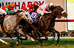 """DEL MAR, CA  AUGUST 21: #10 Astronaut, ridden by Victor Espinoza, #6 Master Piece, ridden by Drayden Van Dyke, #7 Acclimate, ridden by Ricardo Gonzalez, and #4 United, ridden by Flavien Prat, battle in in the stretch of the Del Mar Handicap (Grade ll) Breeders Cup """"Win and You're In"""" Turf Division on August 21, 2021 at Del Mar Thoroughbred Club in Del Mar, CA (Photo by Casey Phillips/Eclipse Sportswire/CSM)"""