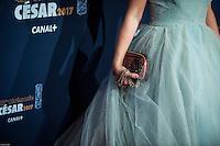 Sidse Babett Knudsen ‡ la 42e CÈrÈmonie des CÈsars ‡ l'arrivÈe sur le tapis rouge de la salle Pleyel ‡ Paris le 24 fÈvrier 2017