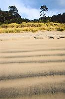 Maori Beach on Rakiura/Stewart Island - Rakiura National Park, Southland, New Zealand