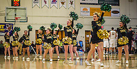 26 January 2014: The University of Vermont Cheer Team entertains the fans during a game between the Binghamton University Bearcats and the University of Vermont Catamounts at Patrick Gymnasium in Burlington, Vermont. The Catamounts defeated the Bearcats 72-39. Mandatory Credit: Ed Wolfstein Photo *** RAW (NEF) Image File Available ***