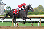 October 10, 2020: Roc's Princess, trained by William Gowan, wins Race 7, Maiden Special Weight, at Keeneland on October 10, 2020 in Lexington, KY. Jessica Morgan/ESW/CSM