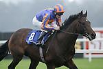 Horse Racing - Leopardstown Racecourse - Kilternan Stakes.The Aidan O'Brien trained Await The Dawn with Johnny Murtagh aboard win the Kilternan Stakes at Leopardstown Racecourse in Dublin.