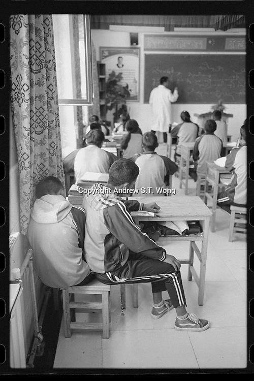 Nangqen County, Yushu Tibetan Autonomous Prefecture, Qinghai Province, China - A local vocational training school, August 2019.