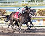 HALLANDALE BEACH, FL - MAR 17:Ivy Bell #1 trained by Todd A. Pletcher with Javier Castellano takes the lead on the way to winning the $200,000 Inside Information Stakes (G2) at Gulfstream Park on March 17, 2018 in Hallandale Beach, Florida. (Photo by Bob Aaron/Eclipse Sportswire/Getty Images)