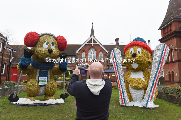 Pictured: A passerby stops to take a photo of Marmite and Méribel, the marmots on display at the top of Alton High Street.<br /> <br /> A council which infuriated residents of an affluent market town by replacing the traditional Christmas tree with a giant skiing marmot is set to provoke fury again - by installing TWO of them this year.<br /> <br /> The most controversial festive illumination of 2019 is poised to cause double trouble this time as the two 16 foot models are lit up by thousands of LEDs.<br /> <br /> Last December the installation of a single 'embarrassing' marmot in Alton, Hants sparked arguments, with many locals angry at the council's decision.  SEE OUR COPY FOR FULL DETAILS.<br /> <br /> © Ewan Galvin/Solent News & Photo Agency<br /> UK +44 (0) 2380 458800