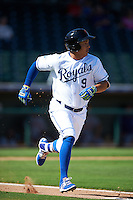 Surprise Saguaros Mauricio Ramos (9), of the Kansas City Royals organization, during a game against the Glendale Desert Dogs on October 22, 2016 at Surprise Stadium in Surprise, Arizona.  Surprise defeated Glendale 10-8.  (Mike Janes/Four Seam Images)
