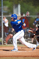 Illinois College Blueboys left fielder Connor Melton (6) at bat during a game against the Edgewood Eagles on March 14, 2017 at Terry Park in Fort Myers, Florida.  Edgewood defeated Illinois College 11-2.  (Mike Janes/Four Seam Images)