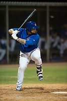 AZL Cubs 1 catcher Alexander Guerra (6) at bat during an Arizona League game against the AZL Padres 1 at Sloan Park on July 5, 2018 in Mesa, Arizona. The AZL Cubs 1 defeated the AZL Padres 1 3-1. (Zachary Lucy/Four Seam Images)