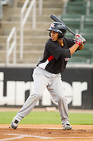Leury Garcia of the Hickory Crawdads at bat against the Kannapolis Intimidators at Fieldcrest Cannon Stadium August 17, 2010, in Kannapolis, North Carolina.  Photo by Brian Westerholt / Four Seam Images