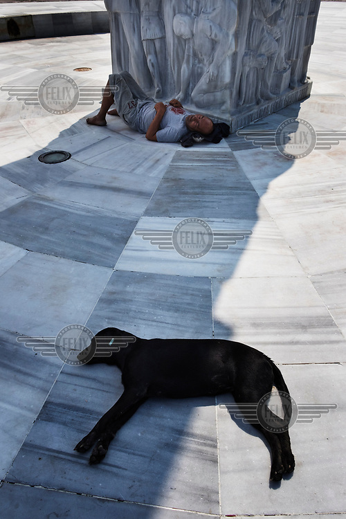 A homeless man and a dog sleeping on the ground beneath the Republic Tree Monument.