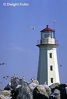 MC11-005z  Machias Seal Island - Bay of Fundy, island, lighthouse, puffins, sea birds