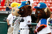 Buffalo Bisons mascots Belle, Buster, and Chip during a game against the Syracuse Chiefs at Coca-Cola Field on September 1, 2011 in Buffalo, New York.  Syracuse defeated Buffalo 6-2.  (Mike Janes/Four Seam Images)