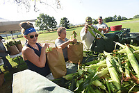 SWEET CORN CREW<br />Sarah Easterling (from left) and Beckie (cq) Thompson work with a crew bagging up ears of sweet corn for sale on Tuesday at a family-run sweet corn stand at 606 N. Goad Springs Road in Lowell. Steve Brown (right) plants three acres of sweet corn each spring on his property near the stand and family members help sell the crop. Corn is picked each morning before sunrise for sale that day. The stand opens at 8 a.m. today. Go to nwaonline.com/210728Daily/ to see more photos. <br />(NWA Democrat-Gazette/Flip Putthoff)