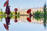 Novice buddhists reflected in water by Sarah Wouters