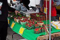 Scenes from a neighborhood farmer's market.