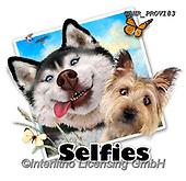 Howard, SELFIES, paintings+++++selfie dogs,GBHRPROV183,#Selfies#, EVERYDAY