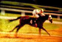 Horse racing, galloping, running. United States.