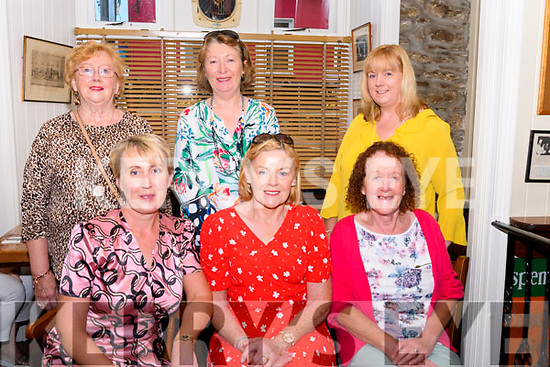 Wk 37 Mary of the Angels 6001<br /> Meeting up in The Bianconi Inn, Killorglin to celebrate four birthdays, Staff from St. Mary of the Angels<br /> seated L-R: Ann Sugrue-O'Brien, Patricia Foley & Kathleen O'Connor<br /> standing L-R Bridie O'Sullivan, Marie Griffin & Una Sheehan<br /> <br /> Attn Breda<br /> ( Contact Ann O'Brien 086 215 4575 )