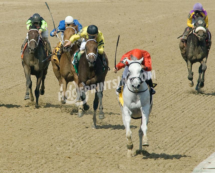 Careless Jewel winning The Delaware Oaks (Gr. 2) at Delaware Park on 7/18/09