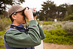 White-crowned Sparrow (Zonotrichia leucophrys) biologist, David Luther, watching birds, Lobos Dunes, Presidio, San Francisco, Bay Area, California
